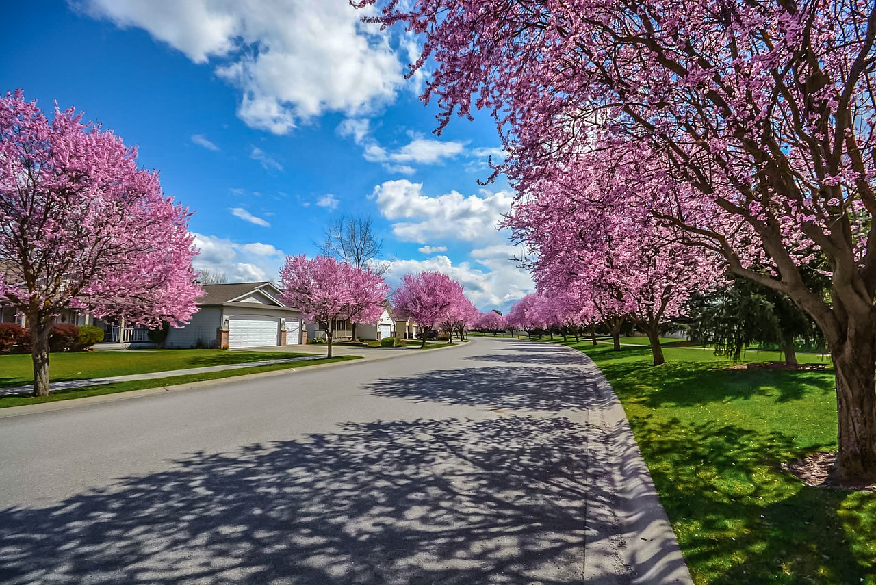 Blog Image, Spring Homebuying, May 2019